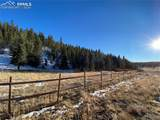 880 Gold Dust Creek Road - Photo 34