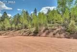 1444 Calcite Drive - Photo 5