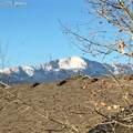 6371 La Plata Peak Drive - Photo 29