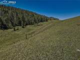 TBD Unknown Trail - Photo 6