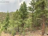 1289 Pine Vista - Photo 12