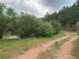 1289 Pine Vista - Photo 20