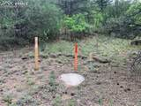 1289 Pine Vista - Photo 22