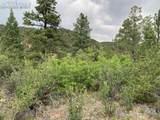 1289 Pine Vista - Photo 5