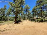 156 Big Bear Road - Photo 14
