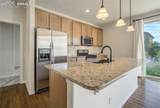6255 Mount Ouray Drive - Photo 19