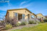 6255 Mount Ouray Drive - Photo 43