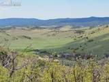 TBD L5C Mesa Road - Photo 4