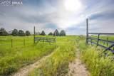 16245 Peyton Highway - Photo 26