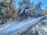 Pine Lane - Photo 10