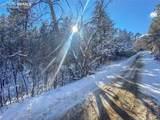 Pine Lane - Photo 3