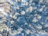 Pine Lane - Photo 7