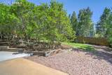 849 Coyote Willow Drive - Photo 40