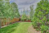 849 Coyote Willow Drive - Photo 41