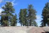 1509 Timber Mesa - Photo 32