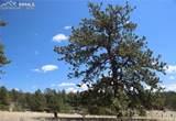 1509 Timber Mesa - Photo 39