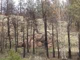 20 Chaparral Trail - Photo 1