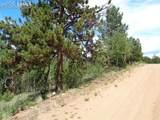 716 Pine Drive - Photo 10