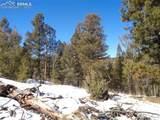 716 Pine Drive - Photo 13