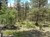 716 Pine Drive - Photo 2