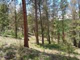 716 Pine Drive - Photo 4