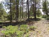 716 Pine Drive - Photo 6