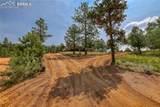 384 Columbine Road - Photo 33