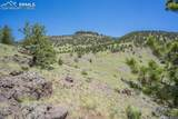 396 Eagle Nest Trail - Photo 36