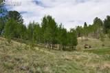 287 Wildhorse Road - Photo 3