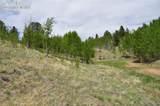 287 Wildhorse Road - Photo 4
