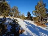 203 Tuscanora Drive - Photo 4