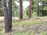 13948 Boulder Lane - Photo 20