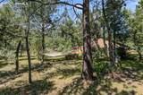 620 Adobe Creek Road - Photo 7