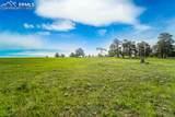 11416 Bison Meadows Court - Photo 11