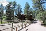 11393 Pine Valley Drive - Photo 32