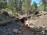 00 42nd Trail - Photo 11