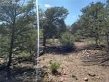 00 42nd Trail - Photo 14