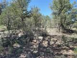 00 42nd Trail - Photo 19