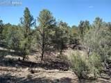 00 42nd Trail - Photo 22