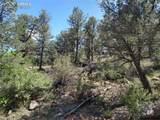 00 42nd Trail - Photo 24
