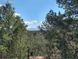 00 42nd Trail - Photo 6