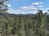 00 42nd Trail - Photo 8