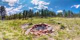 TBD Crested Butte Drive - Photo 20