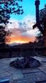 29327 Sunset Trail - Photo 29