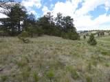 511 Old Kathleen Trail - Photo 7