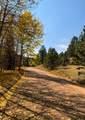 592 Spring Valley Lane - Photo 3