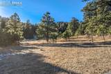 16490 Mesquite Road - Photo 5