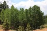 421 Calcite Drive - Photo 1