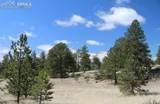 1509 Timber Mesa - Photo 31