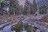 3782 Mountain Dance Drive - Photo 43